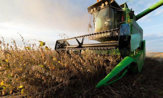 Materias Primas agrícolas